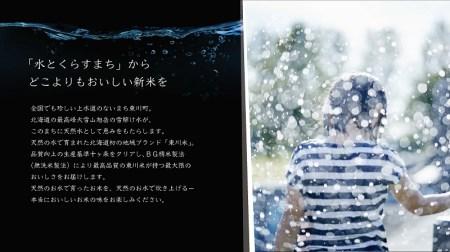 【10000007】【H30年産新米受付】北海道初地域ブランド 東川米「ななつぼし」無洗米10kg