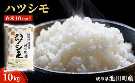 池田町産 ハツシモ白米10kg