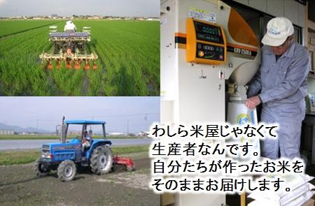【2600-0153】 特別栽培米 ハツシモ/夢ごこち 精米20kg(分搗き可) または 玄米1割増