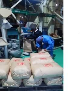 【2600-0160】 池田町農家 特別栽培米ミルキークイーン10kg(白米)【H30年新米】