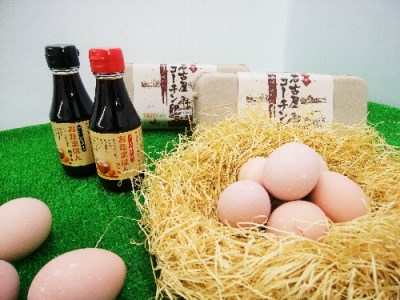 027_純系名古屋コーチン卵(40コ入)卵かけご飯セット[2019]