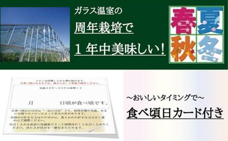 クラウンメロン山等級1玉 【12ヶ月定期便】