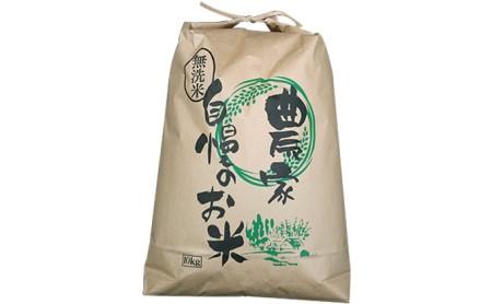 令和3年産新米 コシヒカリ 10kg 無洗米