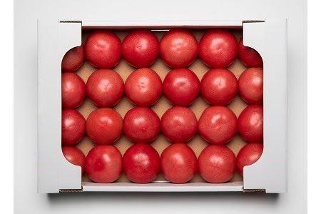 010-034 伊豆の国産!大玉トマト(4kg)