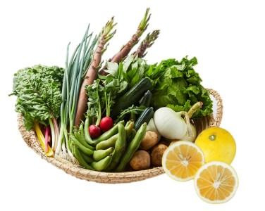 湯の花 旬の野菜と果物セット半年間の定期便