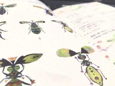 画家・くぼやまさとるの絵本「ニセ蟲図鑑」