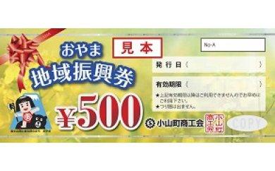 3A-46 おやま地域振興券(500円×8枚)
