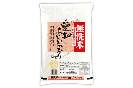 《2019年産》愛知県産あいちのかおり(特別栽培米&無洗米)5kg×2本