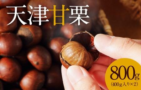この道40年の職人が焼く、やさしい甘みたっぷりの「天津甘栗」1kg! H045-008