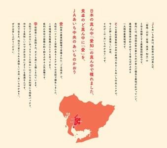 【ご当地のお米】 愛知県産あいちのかおり10kg定期便