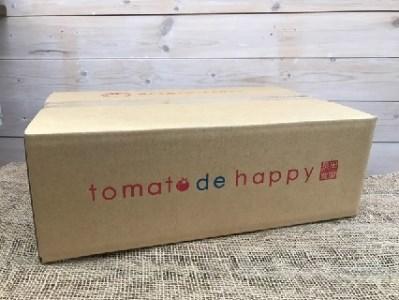 C.まるでトマトの宝石箱!フルーツジュエリートマト