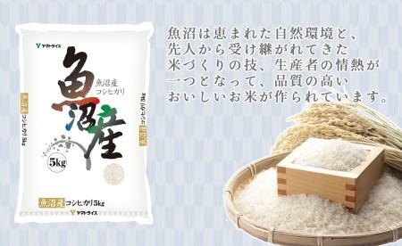 <安心安全なヤマトライス>  新潟県魚沼産コシヒカリ10kg H074-004