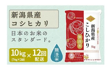新潟県産コシヒカリ 無洗米 10kg ※定期便12回 下旬発送 安心安全なヤマトライス H074-167