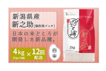 <安心安全なヤマトライス> 新潟県産新之助 4kg (2kg×2袋)  ※定期便12回 H074-084