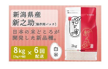 <安心安全なヤマトライス> 新潟県産新之助 8kg ※定期便6回 H074-038