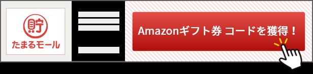 サービス・ショップの詳細ページで「Amazonギフト券 コードを獲得!」ボタンを押し、お申し込み/お買い物をする