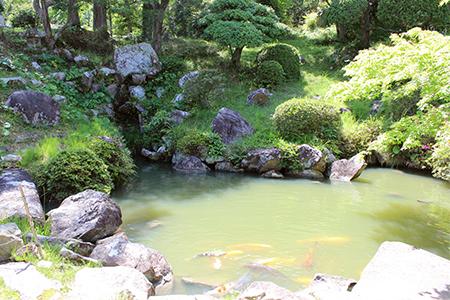 護国寺(ごこくじ)庭園