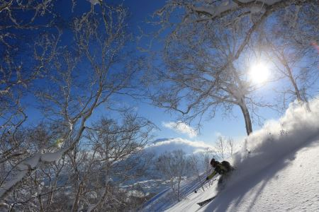 NISEKO Mt.RESORT Grand HIRAFU / NISEKO HANAZONO RESORT