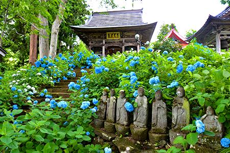 花と温泉が育むふるさとの風景『戸狩温泉』エリア
