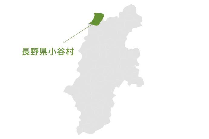 長野県小谷村の地図