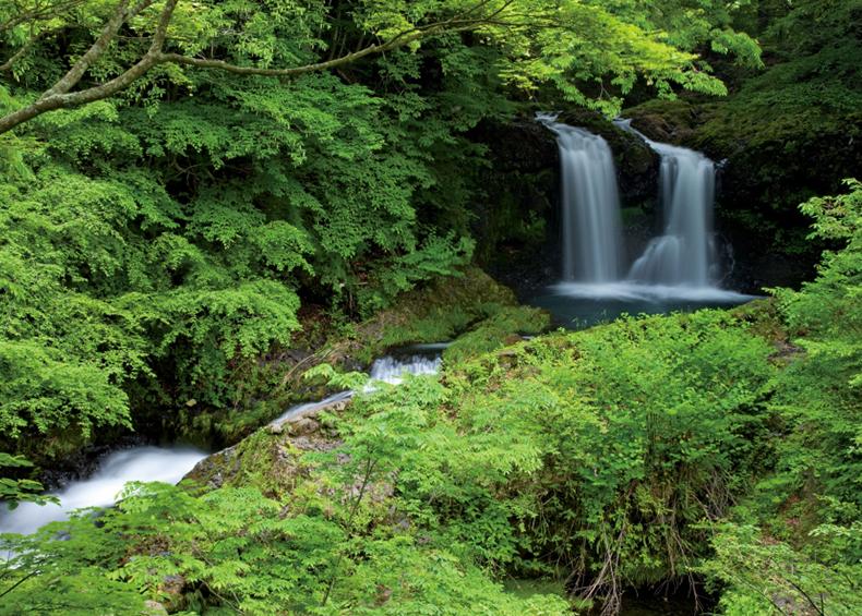 【鐘山の滝(かねやまのたき)】 落差10mの2条の滝は四季折々の色彩をみせる。