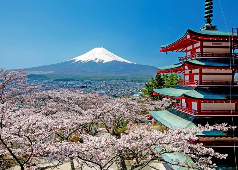 【新倉山浅間公園・忠霊塔】 関東富士見百景のひとつで富士山と忠霊塔の風景は有名。