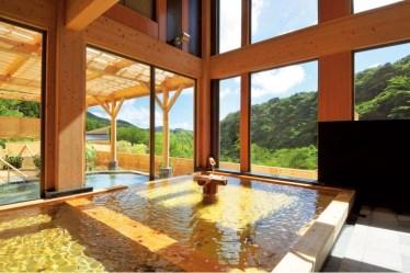 飲泉、自家源泉かけ流しの宿 観音温泉 「ピグマリオン・スタンダード和室」